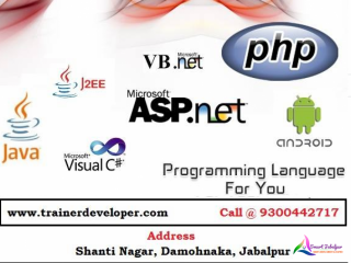 Trainer Developer InfoSoft
