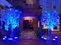 best-wedding-marriage-hall-garden-lawn-in-jabalpur-best-hotel-for-marriage-wedding-in-jabalpur-hotel-akashganga-in-jabalpur-small-2