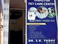 best-pet-care-center-in-jabalpur-best-dog-clinic-in-civil-line-jabalpur-pet-animal-doctor-in-jabalpur-small-3