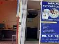 best-pet-care-center-in-jabalpur-best-dog-clinic-in-civil-line-jabalpur-pet-animal-doctor-in-jabalpur-small-1