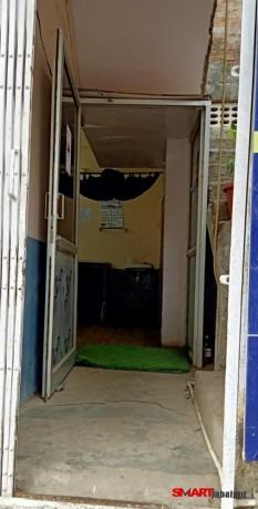 best-pet-care-center-in-jabalpur-best-dog-clinic-in-civil-line-jabalpur-pet-animal-doctor-in-jabalpur-big-2