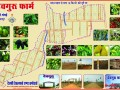 best-farmhouse-near-by-tilwaraghat-jabalpur-best-farmland-in-tilwaraghat-jabalpur-devguru-farms-in-jabalpur-small-7