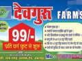 best-farmhouse-near-by-tilwaraghat-jabalpur-best-farmland-in-tilwaraghat-jabalpur-devguru-farms-in-jabalpur-small-1