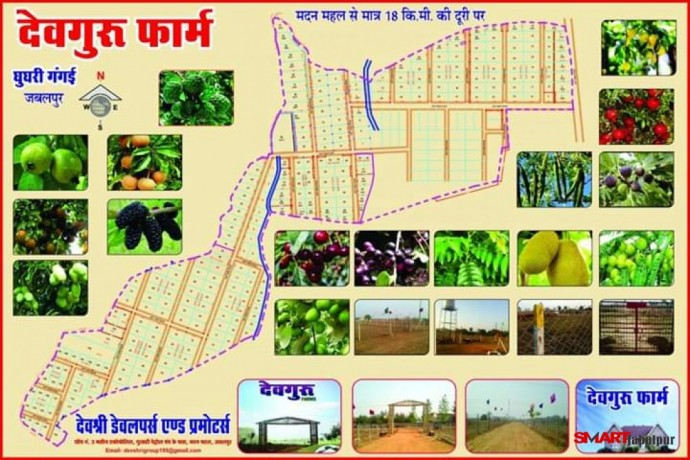 best-farmhouse-near-by-tilwaraghat-jabalpur-best-farmland-in-tilwaraghat-jabalpur-devguru-farms-in-jabalpur-big-7