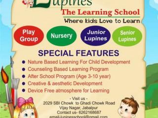 Lupines School || Best School in Vijay Nagar Jabalpur